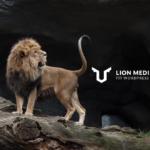 【WordPressテーマ:LION MEDIA】のカスタマイズ例