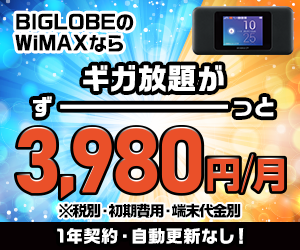 WiMAX+2